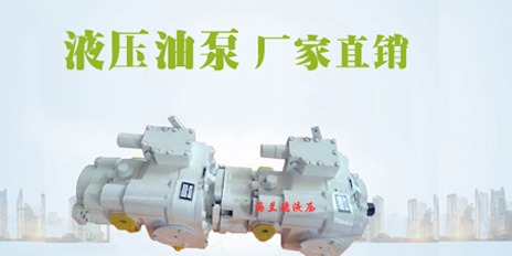 Agricultural machinery hydraulic pump